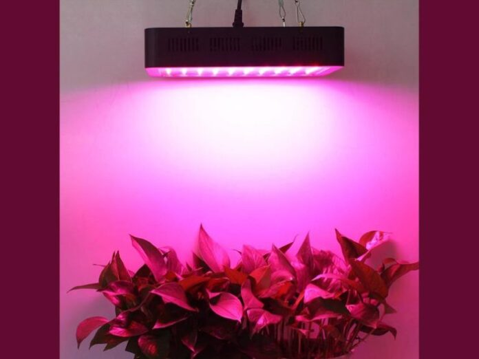 15 Best Led Grow Light In 2020 Top Rated Products With Reviews