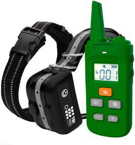 TBI-Pro Dog Training Collar with Remote